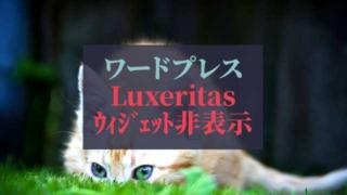 ワードプレス_Luxeritasウィジェット非表示